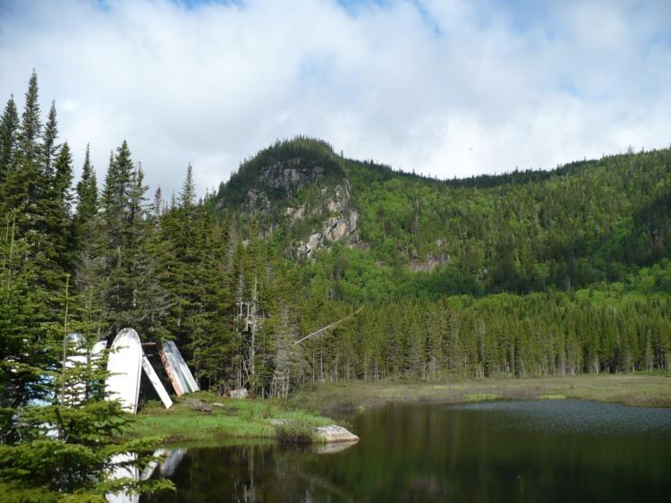 Lake on Quebec Forestlands