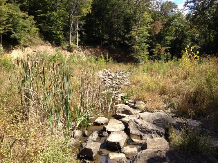 Highland Stream Restoration