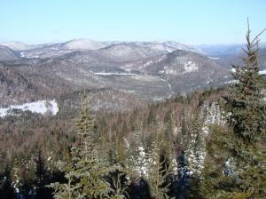 Vista Winter Quebec Forestlands