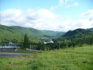 Quebec Forestlands Vista